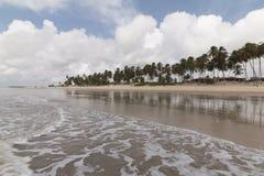Północna linia brzegowa, rio grande robi Norte, Brazylia zdjęcia royalty free