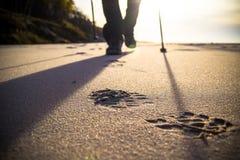 Północna odprowadzenie sporta bieg spaceru ruchu plamy plenerowa osoba iść na piechotę akademie królewskie Obraz Stock