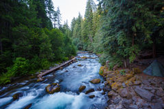 Północna Umpqua rzeka Oregon zdjęcia stock
