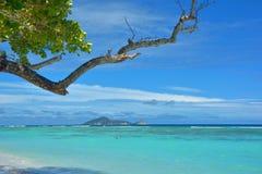 Północna wyspa obraz royalty free