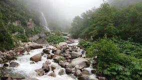Północne Indycze Rize rzeki z siklawy natury kraju życiem, Blacksea Karadeniz, Turcja zbiory wideo