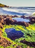 Północnego Kalifornia wybrzeże obraz royalty free