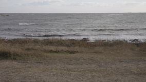 Północnego morza plaża zbiory wideo