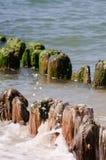 Północnego morza plaża Fotografia Stock