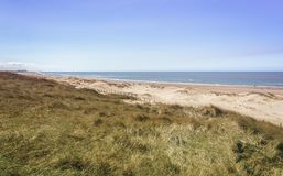 Północnego morza plaża blisko Bloemendaal w holandiach zdjęcia royalty free