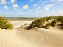 Północnego morza plaża i diuny, Belgia zdjęcia royalty free