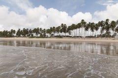 Północni coastile, rio grande robią Norte, Brazylia zdjęcie stock