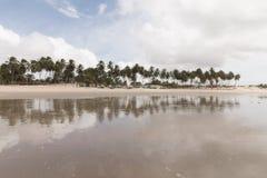 Północni coastile, rio grande robią Norte, Brazylia obraz royalty free