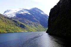 Północny Europejski las - Wikingowie terytorium zdjęcie stock