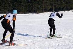 Północny narciarstwo, zima wakacje w Alps, przecinający kraj narciarka w górach obraz royalty free
