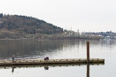 PÓŁNOCNY VANCOUVER, BC, KANADA, APR - 09, 2018: Parkland rafineria na Burnaby górze z rurociąg budowy brać, obrazy royalty free