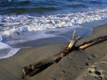 północny zachód na plaży zdjęcie stock