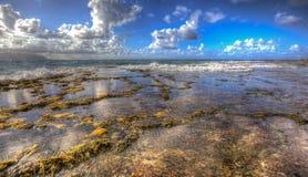 Północy Kaneohe Plażowi korpusy piechoty morskiej Podstawowy Hawaje Obraz Royalty Free