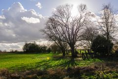 Późne Popołudnie w Wschodni Flandryjskim Fotografia Stock