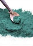 Pó de algas de Spirulina antioxidant imagens de stock