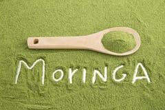 Pó de Moringa - moringa oleifera imagem de stock