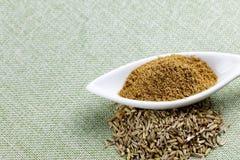 Pó e sementes da erva-doce no fundo da textura Foto de Stock Royalty Free