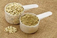 Pó e sementes da proteína do cânhamo fotografia de stock royalty free