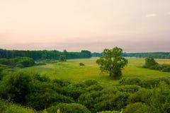 półmroku krajobraz Obraz Royalty Free