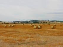 Późne lato krajobraz Obrazy Royalty Free