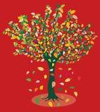 Późnego lata drzewo Fotografia Royalty Free