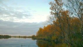 północna natura zdjęcie wideo