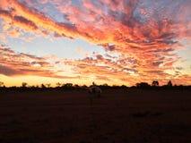 Północno Zachodni Queensland Australia obraz royalty free