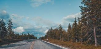 Północny Finlandia, osamotniony reniferowy odprowadzenie na stronie droga na jaskrawym letnim dniu Zdjęcia Stock