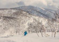 Pó profundo de esqui do esquiador na floresta nevado Imagens de Stock