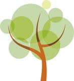 półprzezroczysty drzewo Fotografia Royalty Free