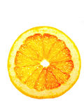 półprzezroczysty grapefruitowy plasterek Zdjęcia Stock
