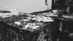 Póker para las cáscaras del mar imágenes de archivo libres de regalías
