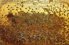 Pólen, néctar e mel nos pentes Foto de Stock