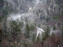 Pólnocna Karolina drzewa, góry, śnieg Obrazy Royalty Free