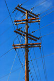Pólo de telefone no céu azul Imagem de Stock Royalty Free