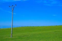 Pólo verde do campo e da linha eléctrica fotografia de stock royalty free