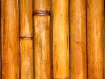 Pólos de bambu Foto de Stock Royalty Free
