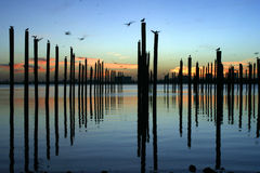 Pólos do embarcadouro no nascer do sol Imagem de Stock Royalty Free