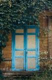 pórtico viejo con la puerta doble Crecido demasiado con las enredaderas Fotos de archivo