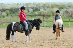 Pôneis da equitação do menino e da menina Foto de Stock
