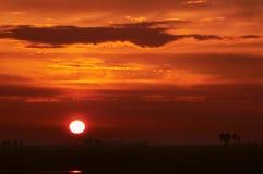 Pôr-do-sol Imagens de Stock