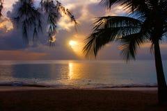 Pôr-do-sol tropical Imagens de Stock Royalty Free