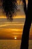 Pôr-do-sol tropical imagens de stock