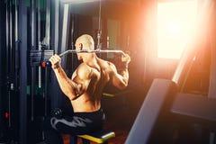 Põe o halterofilista atlético do indivíduo, execute o exercício com instrumento do gym, no músculo o mais largo da parte traseira imagens de stock