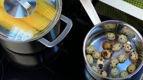 Põe os ovos de codorniz sobre o fogão video estoque