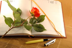 Põe uma rosa em seu diário Fotografia de Stock Royalty Free