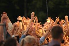 Põr suas mãos no ar! Imagens de Stock Royalty Free
