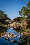 Pöl av vatten med kiselstenar, Chapada Diamantina, Bahia, Brasilien royaltyfri fotografi
