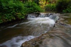 Pöl för varmvatten för fotogenliten viknatur med vattenfallet royaltyfri fotografi
