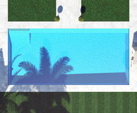 Pöl med skugga från palmträden tolkning för bästa sikt 3d Arkivbilder